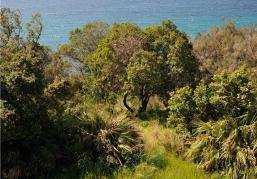 Γιατί ο Γαλλικός Οργανισμός Προστασίας των Ακτών;